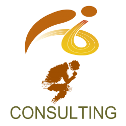 Logo consulting 2